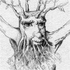 Treebeard drawing icon
